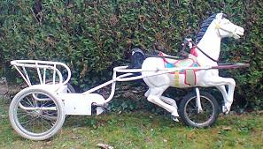 Velo ou cheval